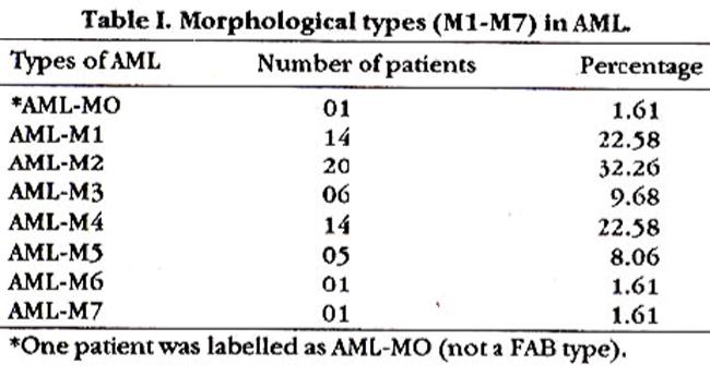 Erythroid blast crisis in chronic myelogenous leukemia ...