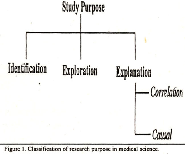 purpose of the study in a research paper Research paper format: a student guide introduction the purpose why write a research paper an extensive study of a subject an effective research paper.